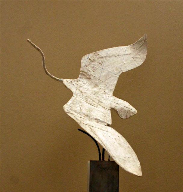 bird armature (8).jpg