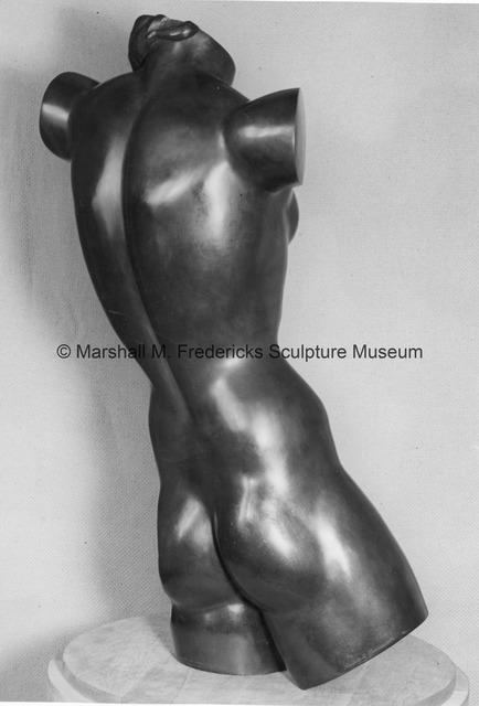 Close-up rear view of Torso of a Dancer.jpg