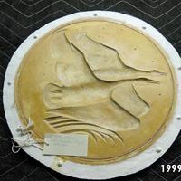 1999.172.jpg