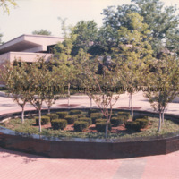Close-up of the landscaped area in Barbara Hallman Plaza - future site of Star Dream Fountain.jpg